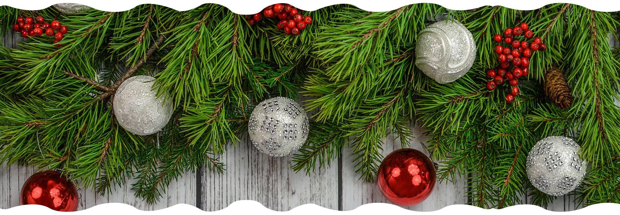 christmas-tree-campaign-gardencenternews-will-do