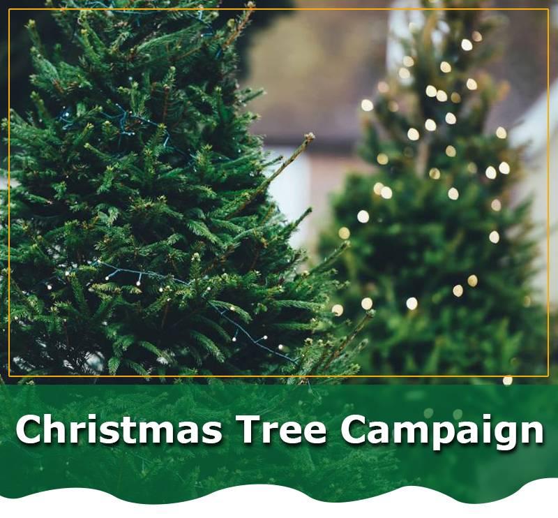 Christmas-Tree-Campaign-eblast-header2