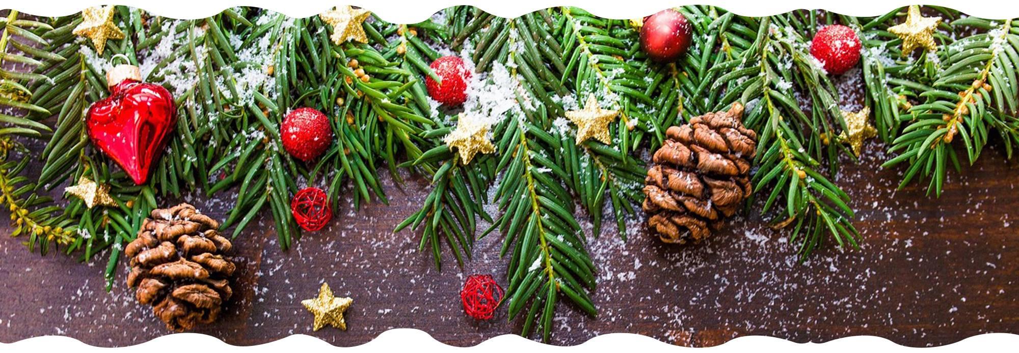 christmas-tree-campaign-gardencenternews-customer-will