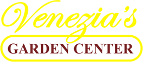 copy-venezia-logo2